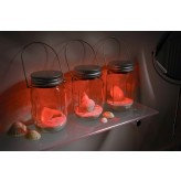 Solalux Set of 3 Remote Control Colour Changing Battery Operated Glass Jar Lights LED Lanterns.1.6